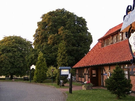 Kastanienhof Luhden von der Seite