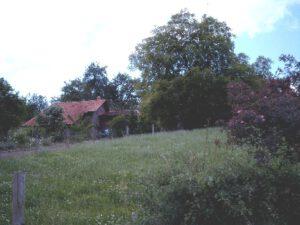 Bauernhof in Luhden