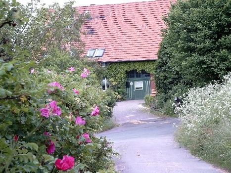 Bauernhaus in Luhden