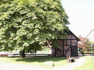 Backhaus Luhden